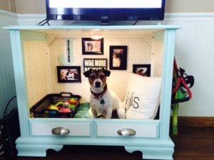 Pet Dreams Dog & Crate Beds For Your Pets